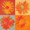 Rod Neer - Pop Flowers II