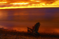 First Light (F1 Online) - Adirondack Chair, See Winnipeg